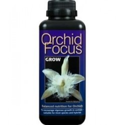 ORCHID FOCUS GROW 1L