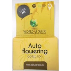 AUTOFLOWERING COLLECTION * WORLD OF SEEDS  8  SEMI FEM