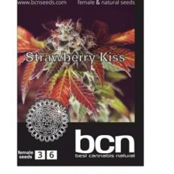 STRAWBERRY KISS * BCN SEEDS   3 SEMI FEM