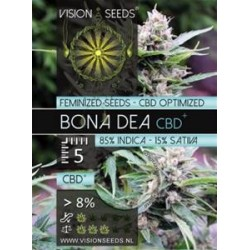 BONA DEA  CBD+ * VISION SEEDS  5 SEMI FEM