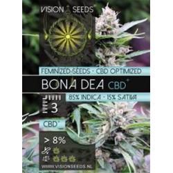 BONA DEA  CBD+ * VISION SEEDS  3 SEMI FEM