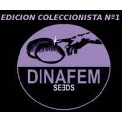 EDICION COLECCIONISTA #1 * DINAFEM SEEDS 6 SEMI FEM