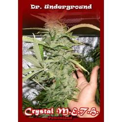 CRYSTAL M.E.H.T. * DR UNDERGROUND 8 SEMI FEM