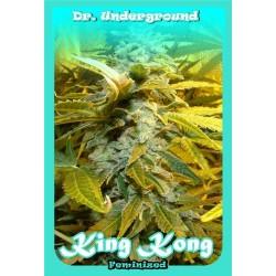 KING KONG * DR UNDERGROUND 4 SEMI FEM