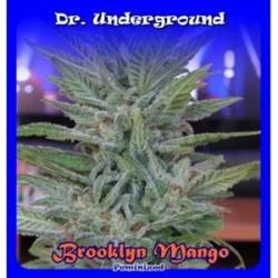 BROOKLYN MANGO * DR UNDERGROUND 4 SEMI FEM