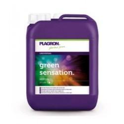 PLAGRON GREEN SENSATION STIMOLATORE FIORITURA  5L