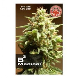 B3 MEDICAL * PURE SEEDS   3 SEMI FEM