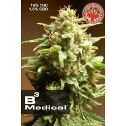 B3 MEDICAL * PURE SEEDS   1 SEME FEM