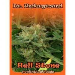 HELL STONE * DR UNDERGROUND 8 SEMI FEM