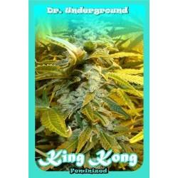 KING KONG * DR UNDERGROUND 2 SEMI FEM