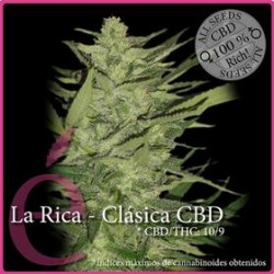 LA RICA CBD  * ELITE SEEDS 7 SEMI FEM