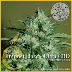 LLIMONET HAZE ULTRA CBD  * ELITE SEEDS 3 SEMI FEM