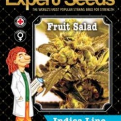 FRUIT SALAD * EXPERT SEEDS 25 SEMI FEM