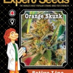 ORANGE SKUNK * EXPERT SEEDS 25 SEMI FEM