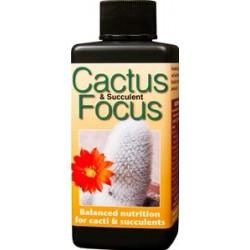 CACTUS FOCUS 300 ML