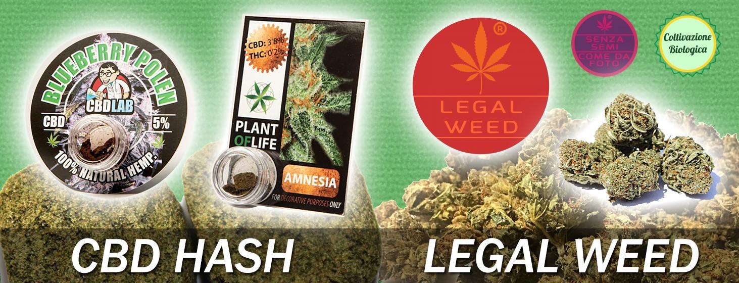 CBD Hash - Legal Weed